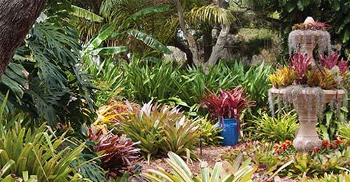 Marie Selby Botanical Gardens Sarasota